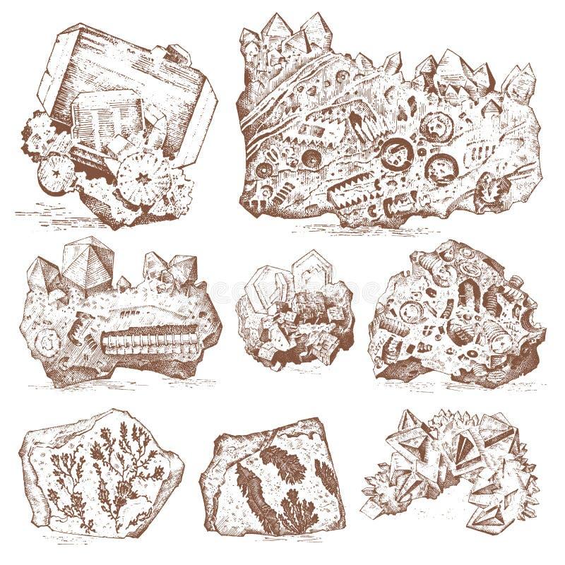 Plantes fossilisées, pierres et minerais, cristaux, animaux préhistoriques, archéologie ou paléontologie fossiles de fragment illustration libre de droits