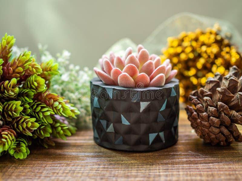 Planteur géométrique coloré Planteur concret peint pour la décoration à la maison photos libres de droits