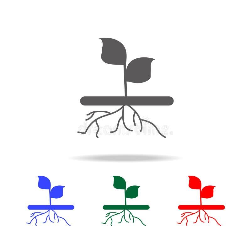 plantez avec l'icône de racines Éléments de jardin dans les icônes colorées multi Icône de la meilleure qualité de conception gra illustration de vecteur