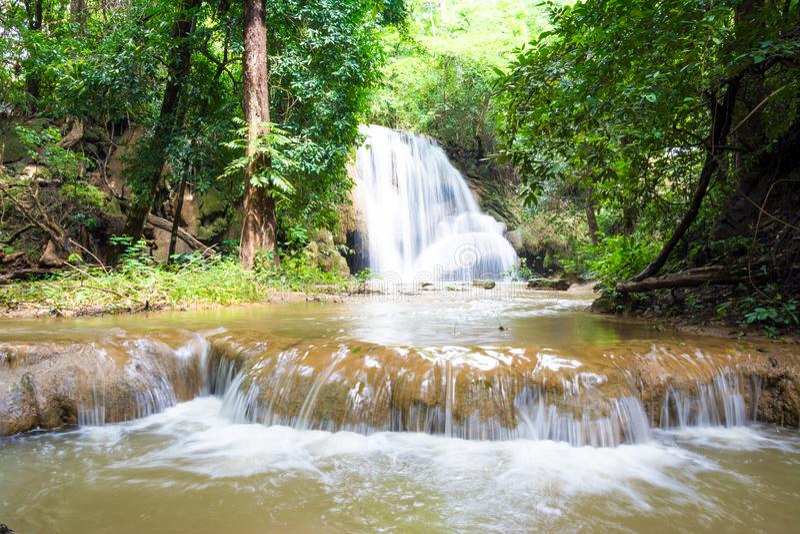 Planthong vattenfallPhuphaman nationalpark, Khon Kaen, Thailand royaltyfria foton