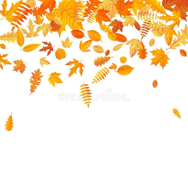 Plantilla anaranjada y amarilla de las hojas de otoño que cae EPS 10 ilustración del vector