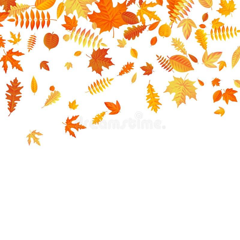 Plantilla anaranjada y amarilla de las hojas de otoño que cae EPS 10 stock de ilustración