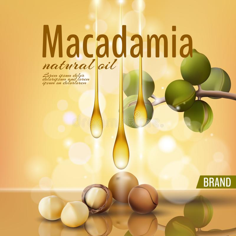 Plantilla cosmética realista del anuncio de la cáscara del aceite de nuez de macadamia 3d La rama sale de la cáscara de nuez Cuid stock de ilustración