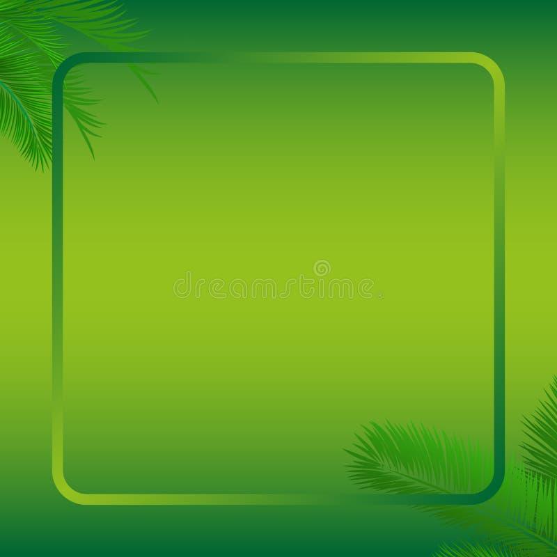 Plantilla de hoja de palma verde fotos de archivo