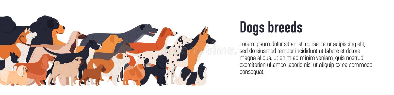 Plantilla de la bandera para la exposición canina de la conformación con el grupo de perritos divertidos lindos de diversas razas stock de ilustración