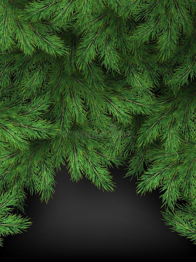Plantilla de la Navidad y del Año Nuevo de ramas realistas del árbol de navidad en fondo negro EPS 10 stock de ilustración