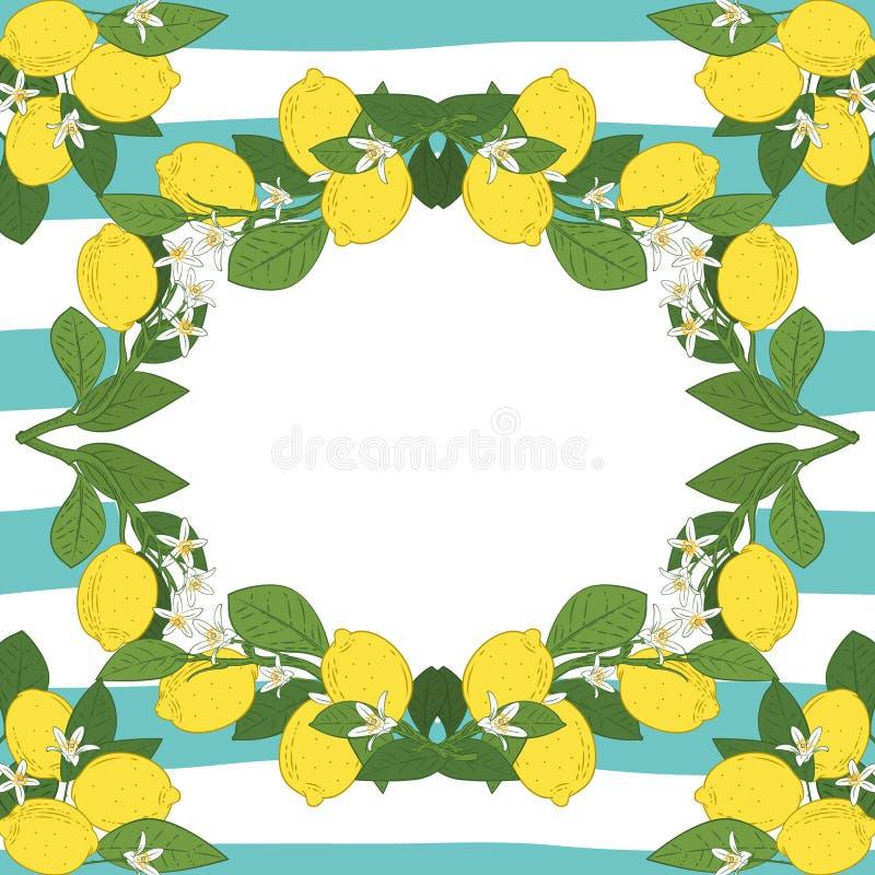 Plantilla de la tarjeta con el texto Marco tropical de las frutas del limón de la fruta cítrica en fondo linear de los azules tur stock de ilustración
