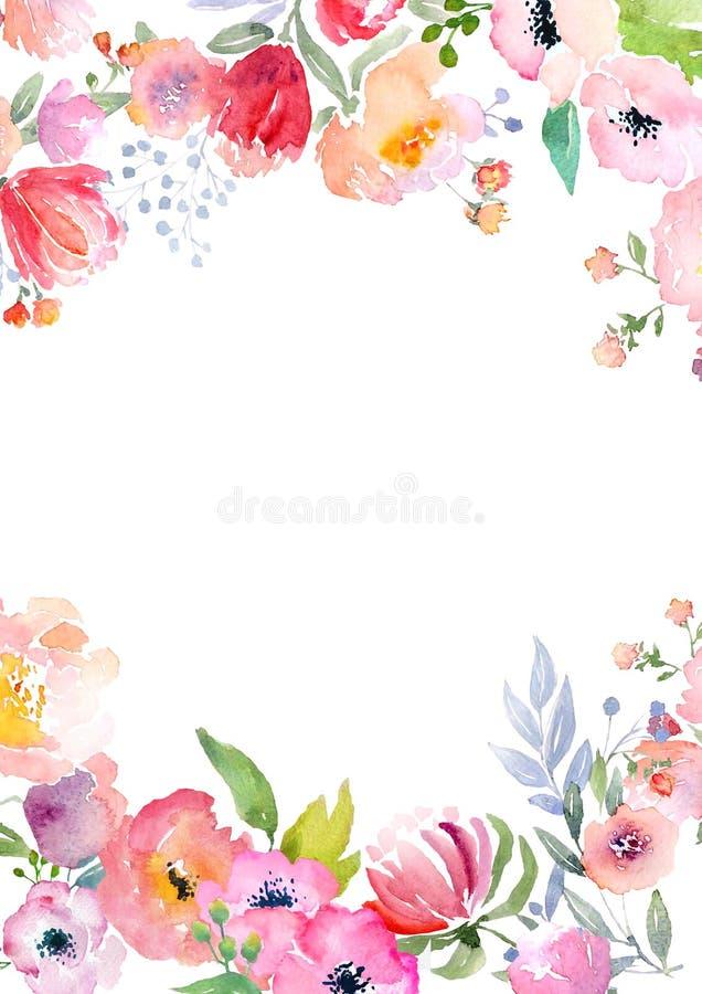 Plantilla de la tarjeta de las rosas de la acuarela stock de ilustración