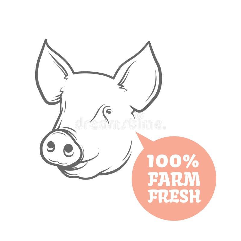 Plantilla Del Diseño Del Logotipo Del Cerdo Ilustración del Vector ...