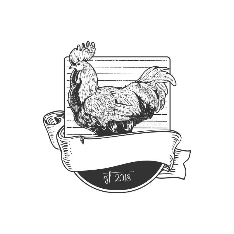 Plantilla del logotipo de la insignia del vector del gallo del estilo del vintage stock de ilustración
