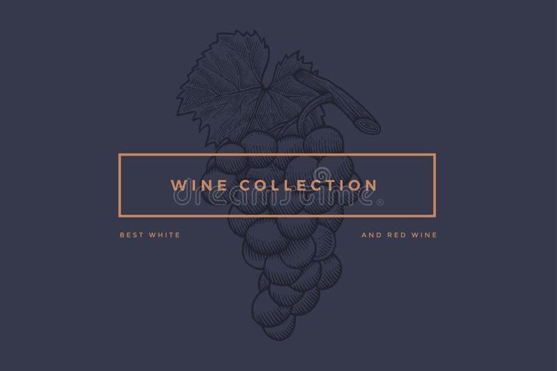Plantilla del logotipo para el diseño de tarjeta del vino, folleto, menú para el restaurante ilustración del vector