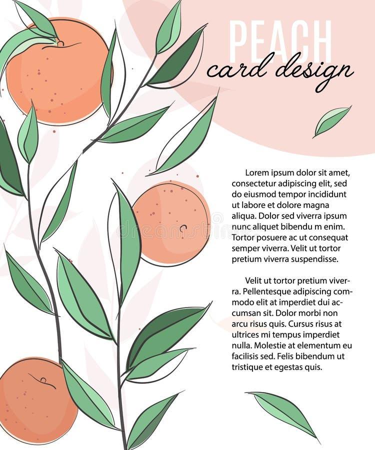 Plantilla del vector con los melocotones, las hojas y el texto Aviador vegetariano del folleto de la fruta, prospecto del folleto libre illustration