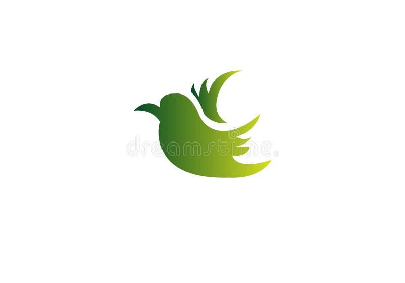 Plantilla del vector del dise?o del logotipo del extracto del p?jaro de vuelo Icono creativo del logotipo de la paloma colorida libre illustration