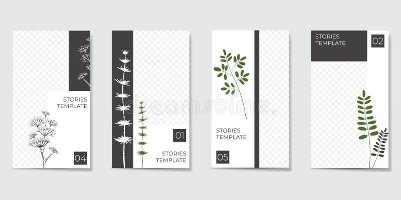 Plantilla editable minimalista para las historias y fluir foto de archivo