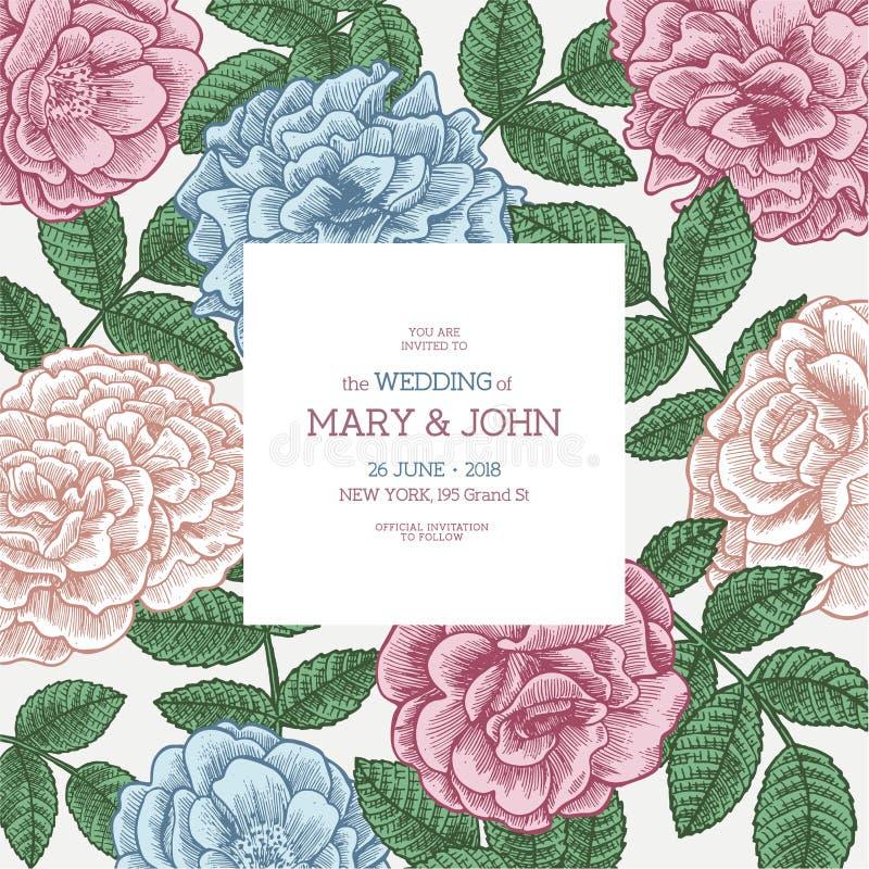 Plantilla floral de la invitación de la boda Diseño de tarjeta floral Rosas del vintage ilustración del vector