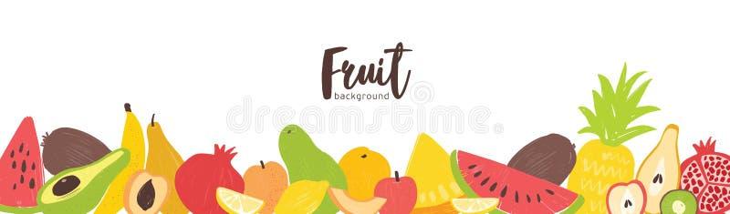 Plantilla horizontal de la bandera con del verano org?nico fresco de las frutas la frontera jugosa tropical ex?tica en la parte i ilustración del vector