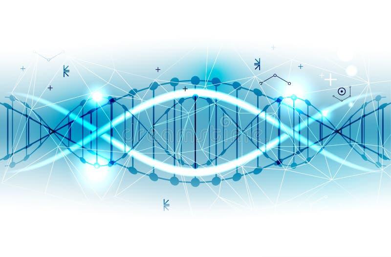 Plantilla, papel pintado o bandera de la ciencia con las moléculas de una DNA Vect ilustración del vector