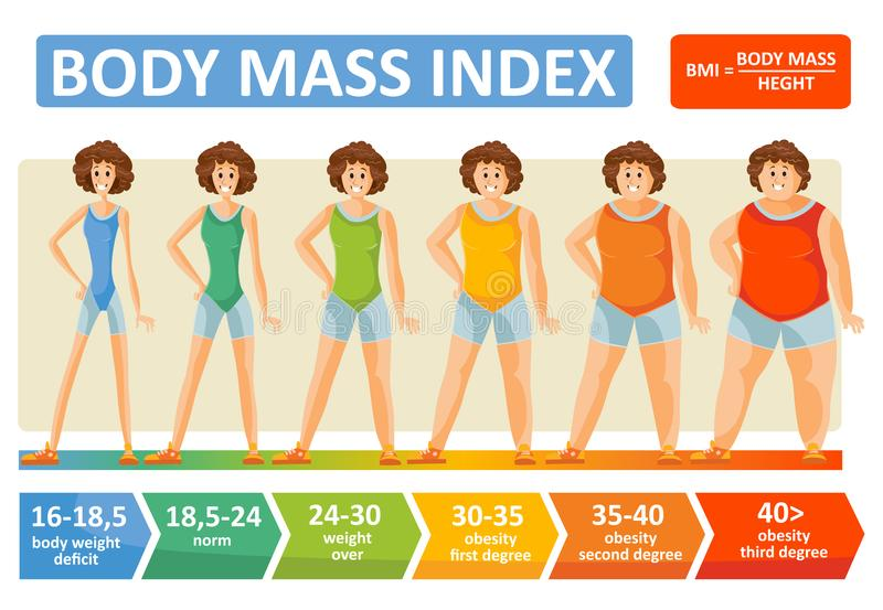 Plantilla plana del infographics del vector de la edad de la mujer del índice de masa corporal para el concepto de la dieta de la stock de ilustración