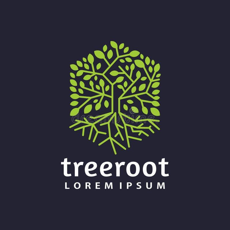 Plantilla plana moderna del logotipo de la raíz del árbol del hexágono ilustración del vector