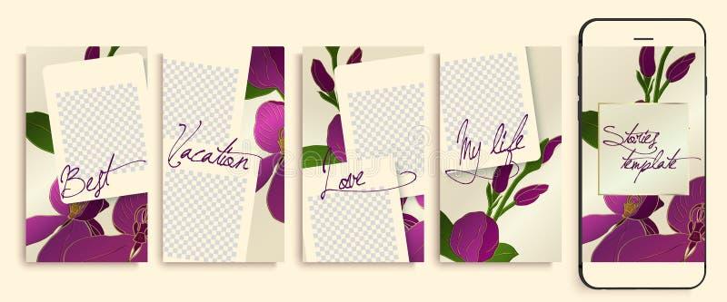 Plantillas editable de moda de las historias de Instagram con el estampado de flores, ejemplo del vector punto culminante de la h libre illustration