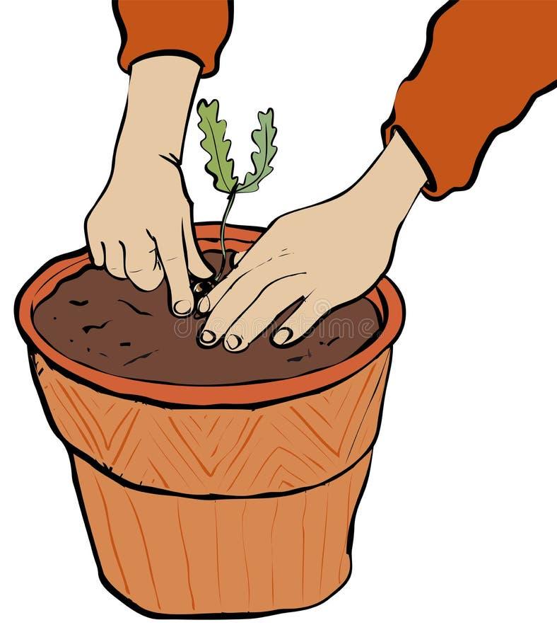 planting ilustración del vector