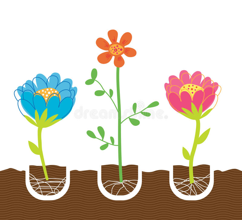 Download Planting Flowers stock vector. Image of flower, bright - 9517051