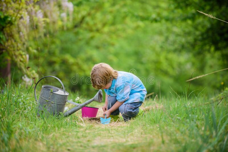 Planting flowers. Growing plants. Take care of plants. Boy with watering can. Small boy child love nature. Digging soil stock photography