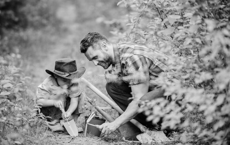 Planting flowers. Little helper in garden. Farm family. Little boy and father in nature background. Gardening tools royalty free stock photos