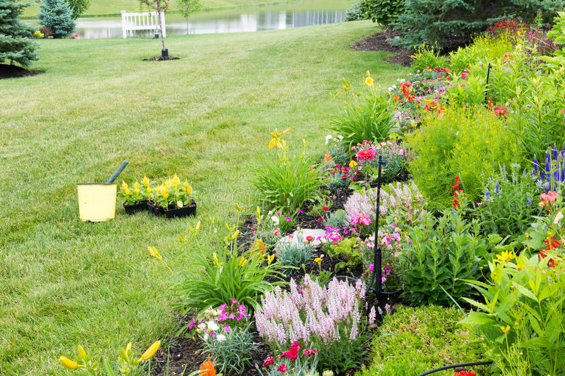 Planting new flowers in a spring garden stock photos