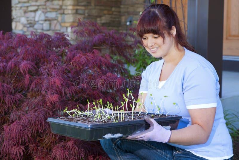 Download Planting season stock image. Image of brunette, healthy - 24855669