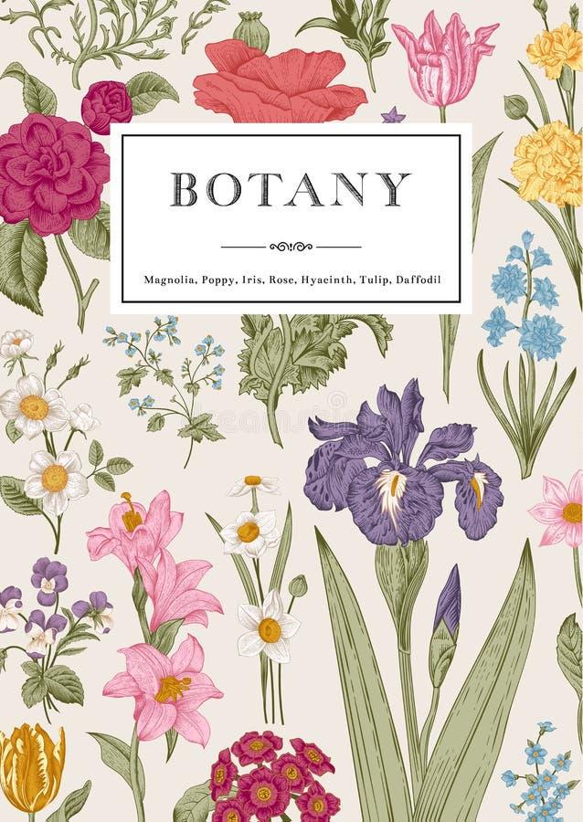 plantkunde Uitstekende bloemenkaart vector illustratie