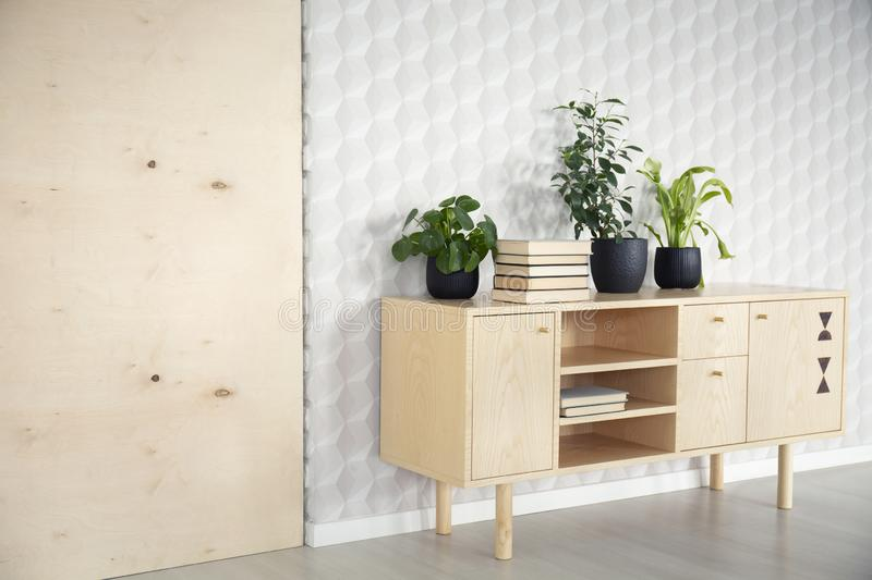 Plants and books on wooden cupboard in natural living room interior with wallpaper. Real photo. Concept royalty free stock photography
