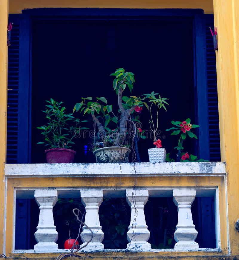 Plants in colorful window, Hoi An, Vietnam stock photo