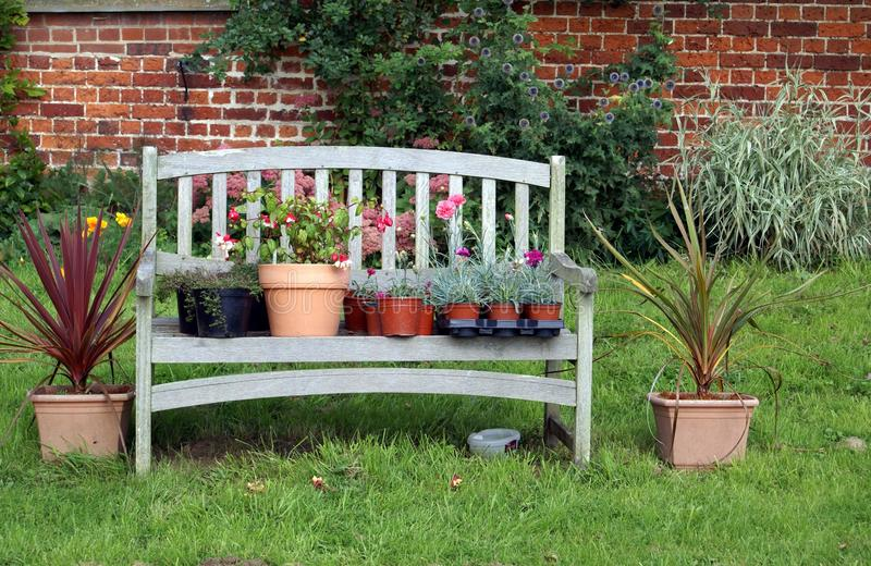plants and flowers in pots on a wooden garden seat or bench stock photo