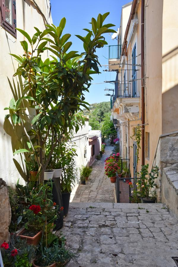 Plants and flowers in a street of the town of Modica in Sicily. stock photos