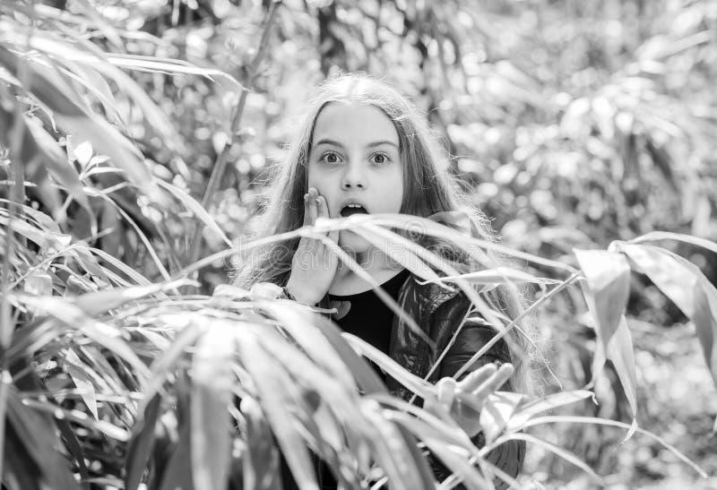 Plants grown for display to public. Pleasant relaxing walk in garden. Girl walk in botanical garden. Enjoying nature in. Garden. Peaceful environment garden royalty free stock photography
