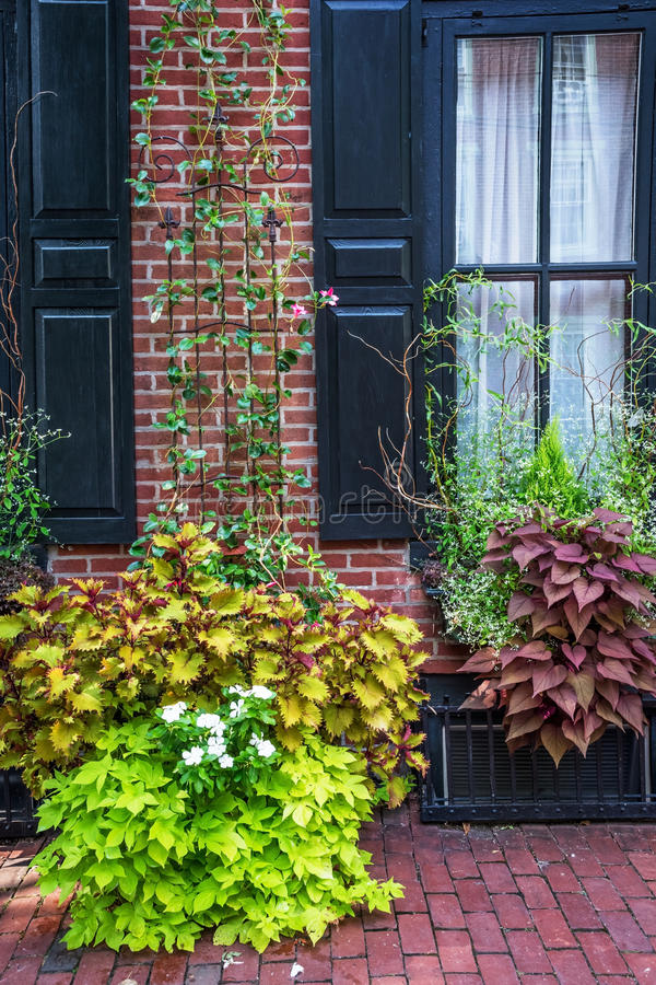 Plants and Wall. A quaint home exterior in historic Lambertville NJ royalty free stock image