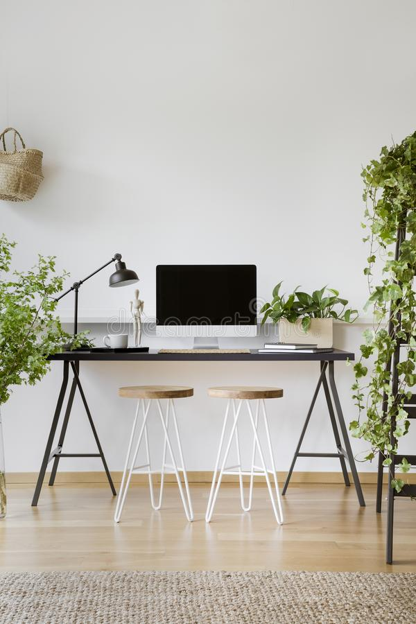 Plants in white workspace interior with wooden stools at desk with lamp and desktop computer. Real photo stock image