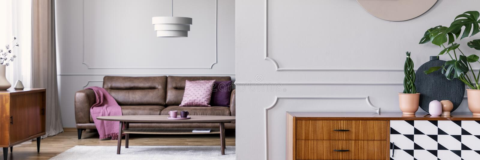 Plants on wooden cabinet in grey living room interior with pink blanket on leather couch. Real photo. Concept royalty free stock photos