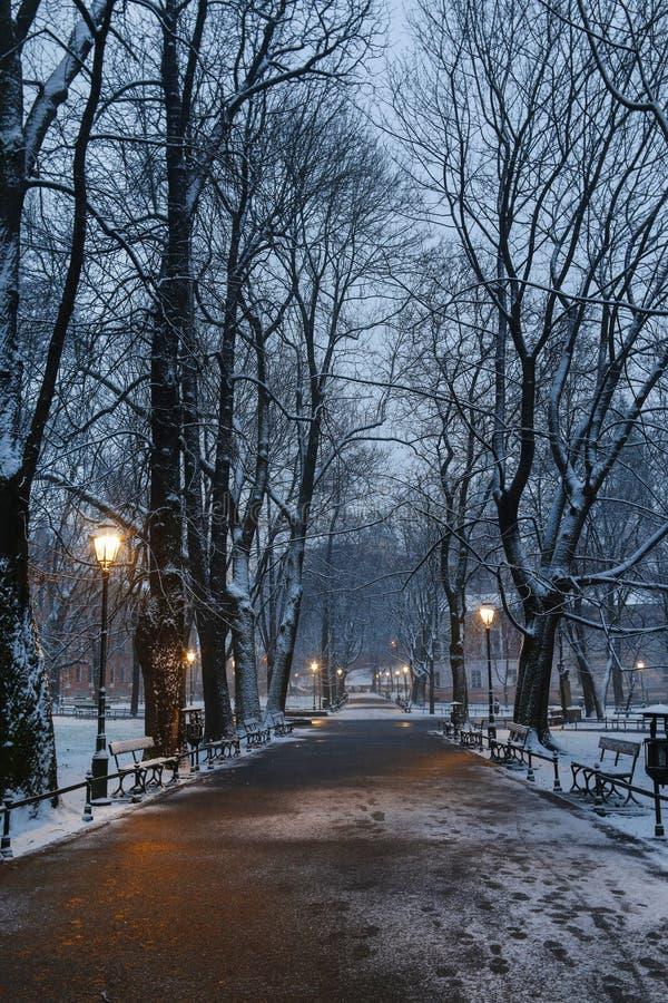 Planty -城市公园在克拉科夫,波兰 库存图片