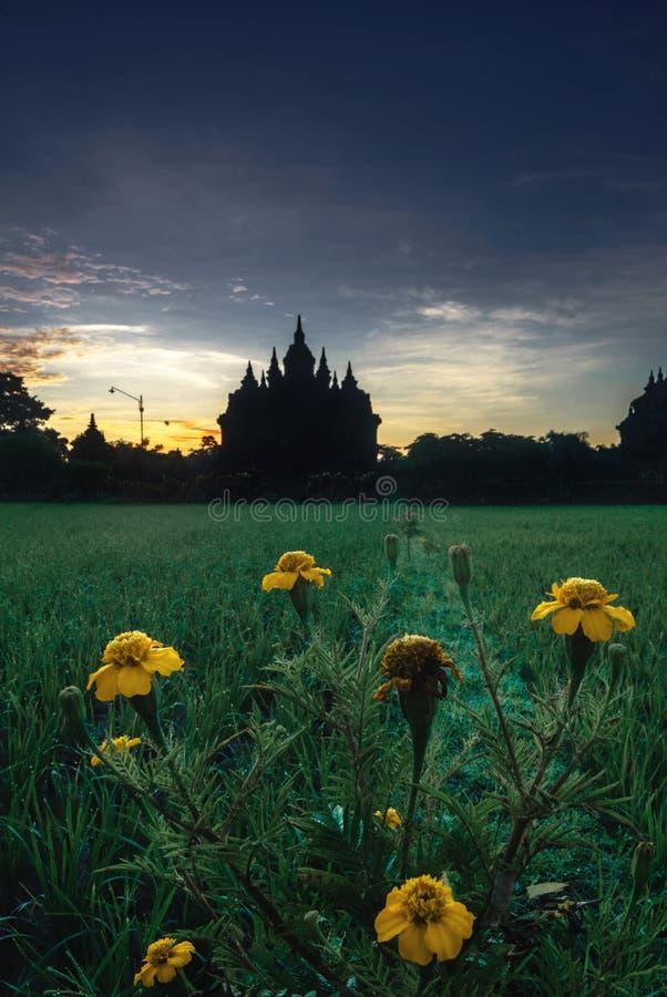 Plaosan tempel royaltyfria bilder