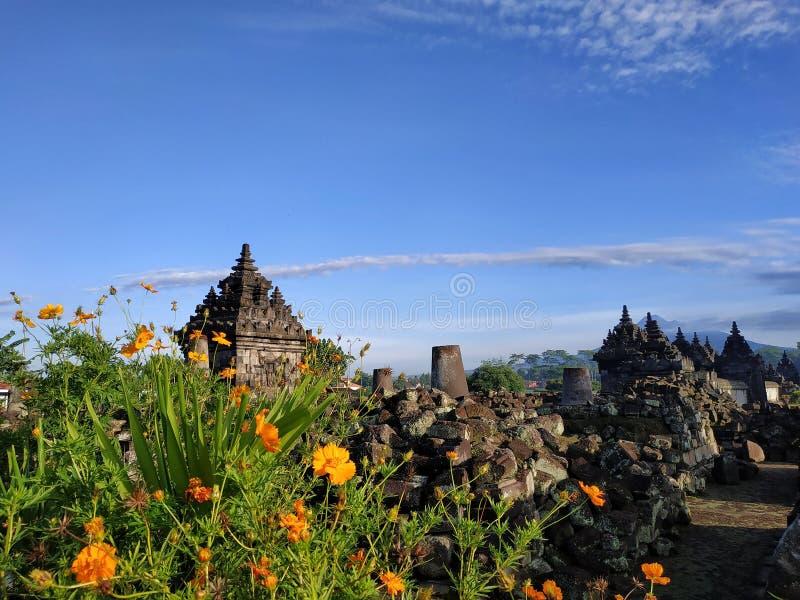Plaosan tempel, Klaten centrala Java Indonesia royaltyfri fotografi