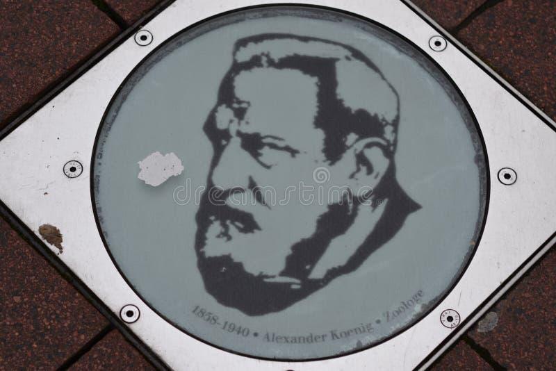 Plaque of Alexander Koenig zoöloog in Bonn, Duitsland stock afbeelding