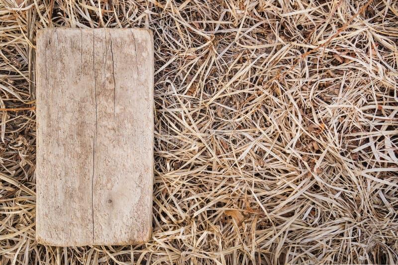 Plaque en bois sur le fond d'une herbe sèche d'automne image libre de droits