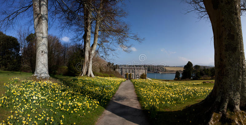 Plas Newydd. In spring with lots of daffodils out and the Menai Straits in teh background stock photo