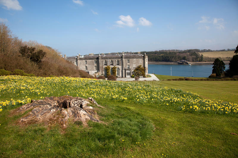 Plas Newydd. In spring with lots of daffodils out and the Menai Straits in teh background royalty free stock photography