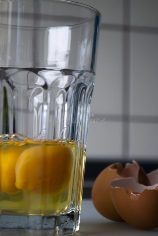 Plaskat ägg i ett exponeringsglas fotografering för bildbyråer
