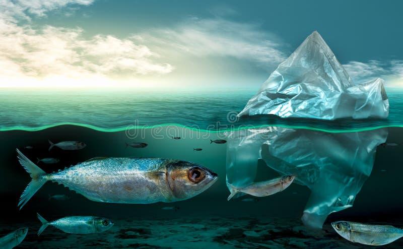 Plast- förorening i marin- djur för miljö- problem i havet kan inte bo Och orsaka plast- förorening i havet royaltyfri fotografi