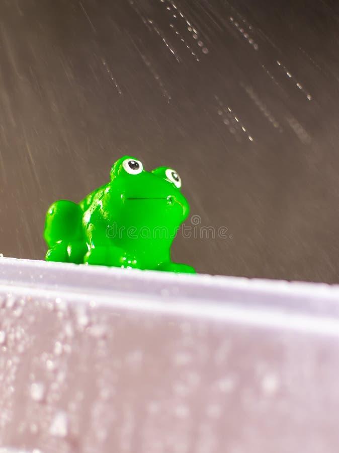 Plast- grön groda i regn arkivfoto
