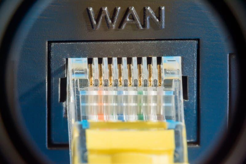 Plast- kontaktdon för anslutning till ett datornät, makrobakgrund arkivfoton